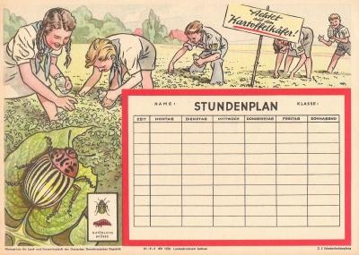DDR-Stundenplan - Achtet auf den Kartoffelkäfer!