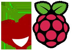 Radicale Raspberry Pi Logo
